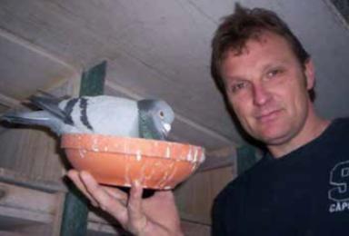 1e Nationale Midfond duif: Kees van de Beek